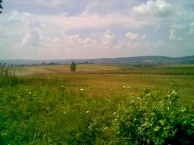 http://blog.pioder.pl/upload/mlodowice_krajobraz.jpg